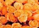 Как использовать вибрации цвета Живите оранжево