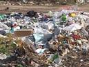 Переработка отходов - это выгодный бизнес, считают эксперты