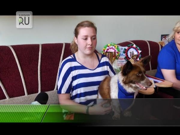 Беспородная собака из Кургана снимется в клипе продюсера Стаса Савичева