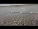 Жемчужина у моря
