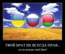 Григорий Романович фото #5