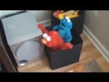 Elmo and Cookie Monster are naughty