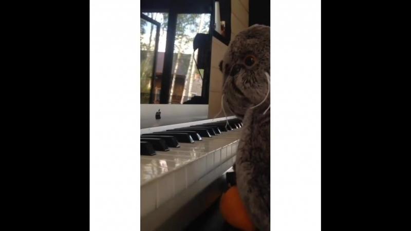 Басик решил снять клип на трек One Love
