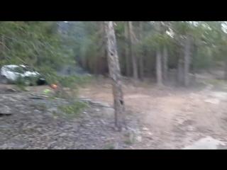 Вродь как комаров поменьшэ!😀🐜🐝🐞 #глубокаячащалеса #каркаралинск #комиссаровка #отдых #лес #горы #комаровкуча #сожраливсех #ж