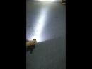 Светодиодная рабочая лампа 10W для внедорожника 12V 24V 6000K противотуманная фара