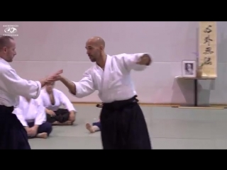 Aikido- Stephane Goffin Vienna Nov 17.mp4
