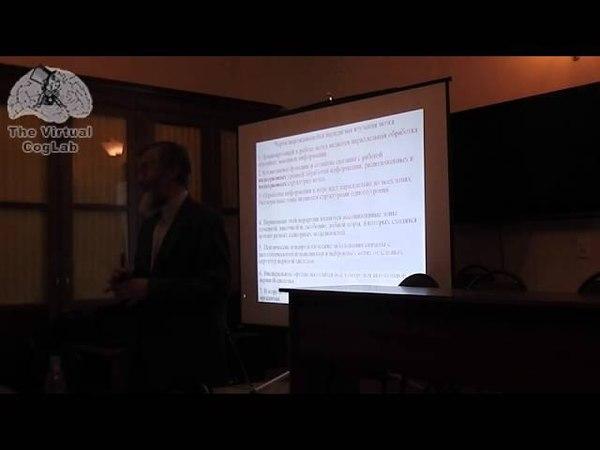 Иван Пигарев (ч2) на Московском семинаре по когнитивной науке 27.11.2014