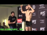 Хабиб Нурмагомедов сделал вес перед боем с Конором МакГрегором на UFC 229