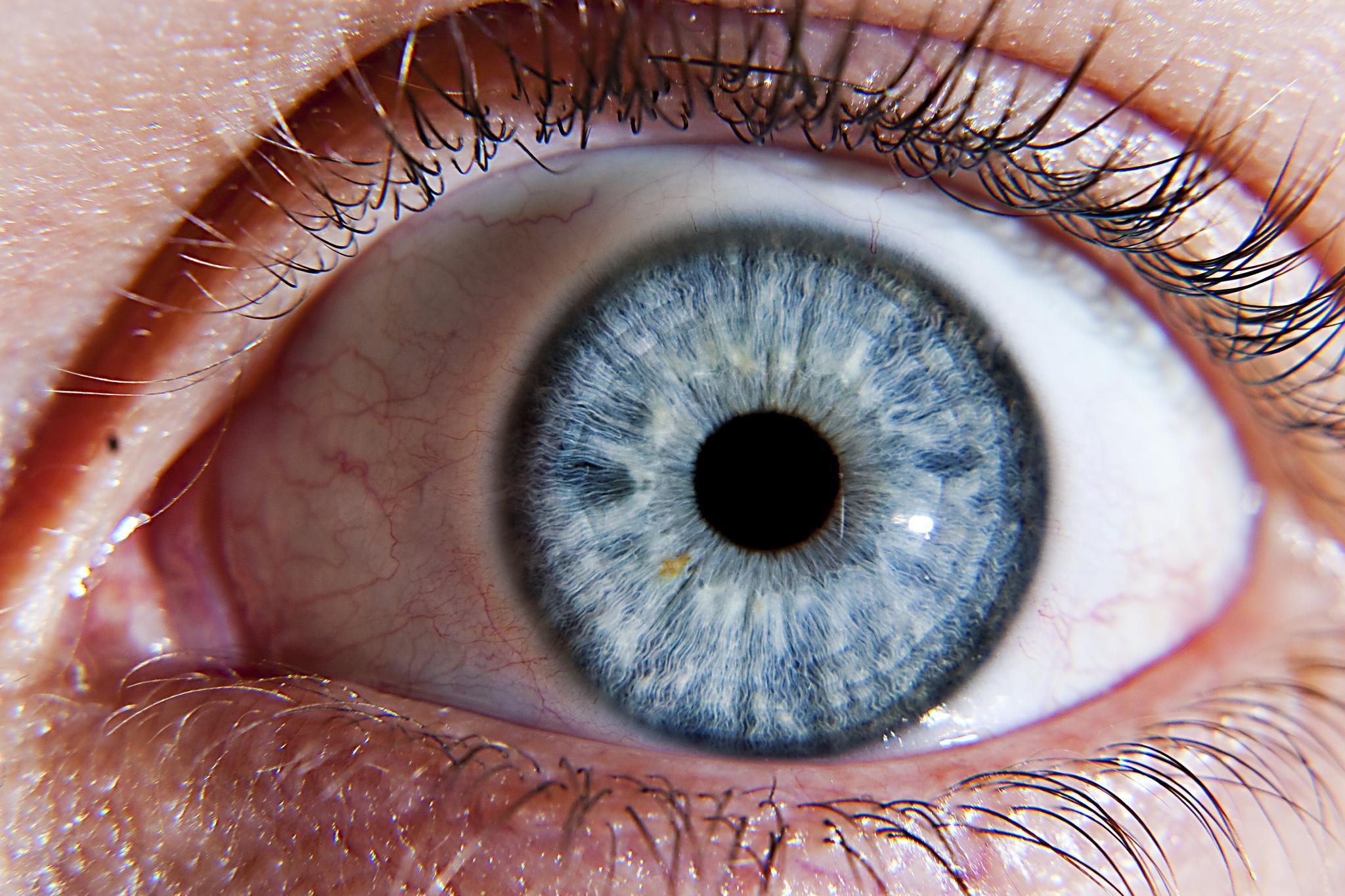 Что такое офтальмология?