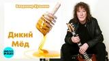 Владимир Кузьмин - Дикий мёд (2018)