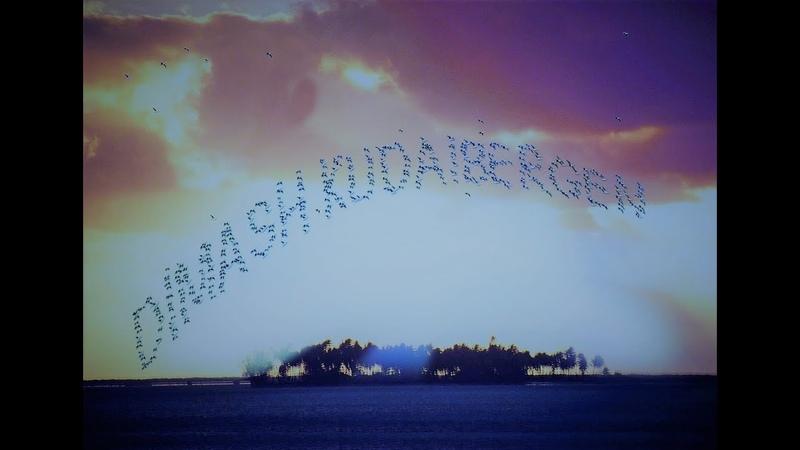 Dimash K. les couleurs de l'arc en ciel 1.... The Man in Blue