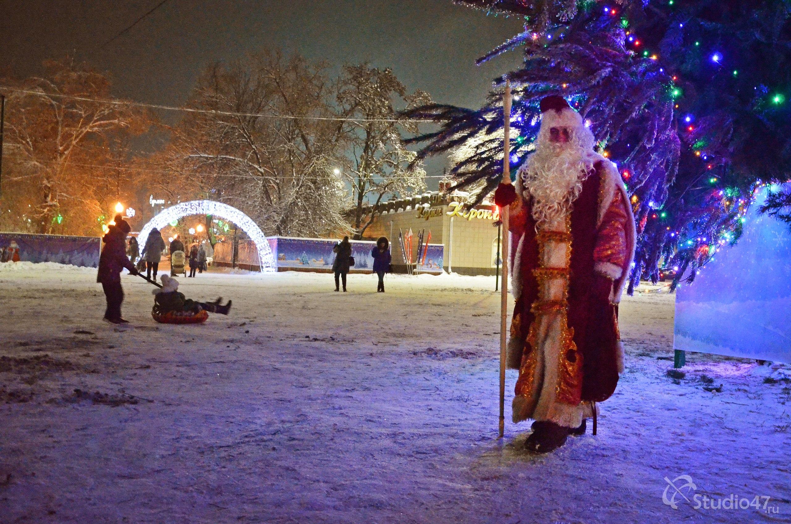Дед Мороз под новогодней ёлкой
