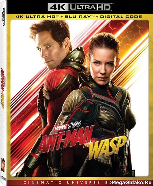 Человек-муравей и Оса / Ant-Man and the Wasp (2018) | UltraHD 4K 2160p