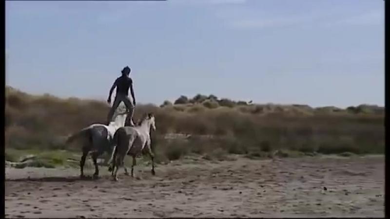 Жан Франсуа Пиньон и его свободные лошади.