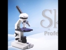 Skin Professional Dead Sea Cosmetics Izrail🇮🇱