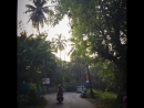 Goa trip, November 2017