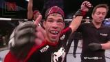 T. J. Dillashaw полные потери в боях MMA (UFC)