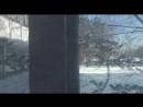 Карусель на участке №675 в Сосновоборске видео штаба Навального в Красноярске