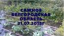 ЗАТОПИЛО Сажное Белгородская область подъем грунтовых вод. 21 июля 2018 г