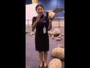Бумажные камни (VIDEO ВАРЕНЬЕ)
