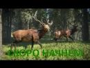 TheHunter: Call of the Wild ► Симулятор охотника на Xbox ONE ► Часть - 01