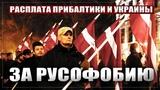 Расплата Прибалтики и Украины за русофобию (aftershock.news)