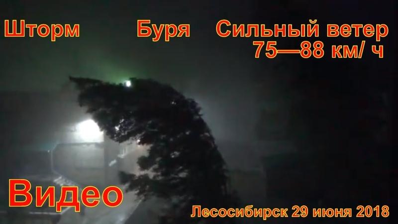 Сильный ветер Лесосибирск 2018 29 июня Вывернул деревья с корнем шифером побил автомобили порвал про
