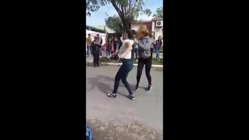 Cheta pelea de mujeres
