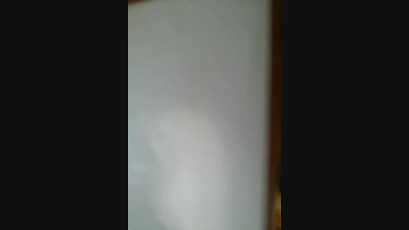 Урок: как нарисовать кота Пушина.