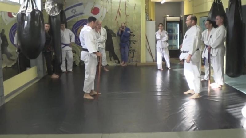 Ju Jutsu Фрагмент семинара Е А Радишевского Бушинкан Техники Йошин Рю и Дайто Рю
