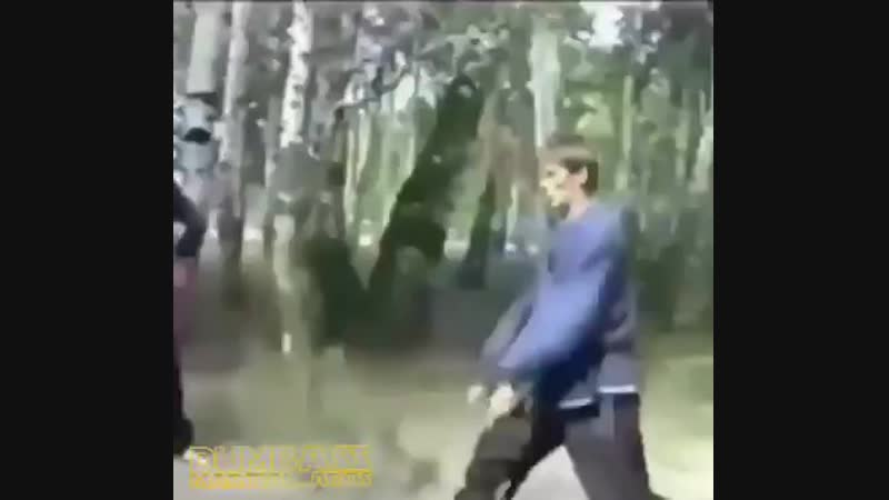 Defend yourself using tree branches...