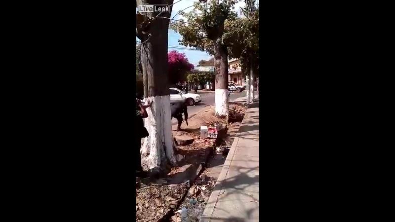 Hombre armado con machete ataca a la policía y es abatido en El Salvador.