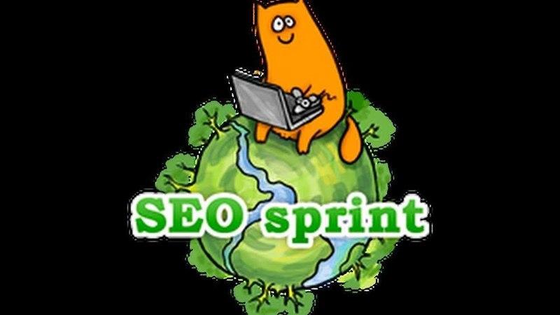 Как заработать на Seo Sprint 1000р