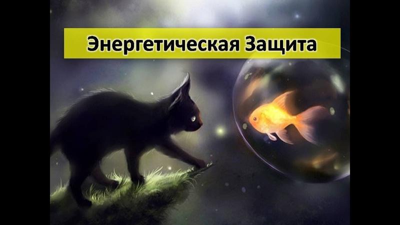Практика Защиты Елена Баршева