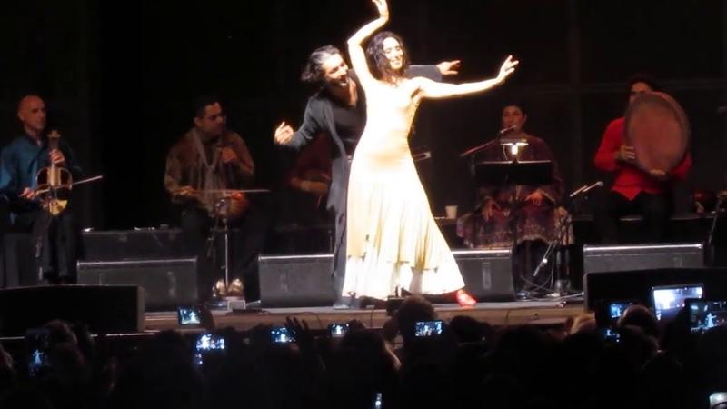 رقص اصیل و بسیار زیبای ایرانی. شاهرخ مشکین ق