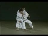 Fighting Films - Toshihiko Koga: A New Wind (Judo)