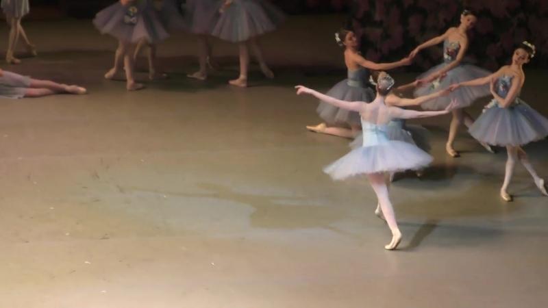17_03_18 Don Quixote, Act II, Dream. Alexandrova, Chebykina, Russkikh