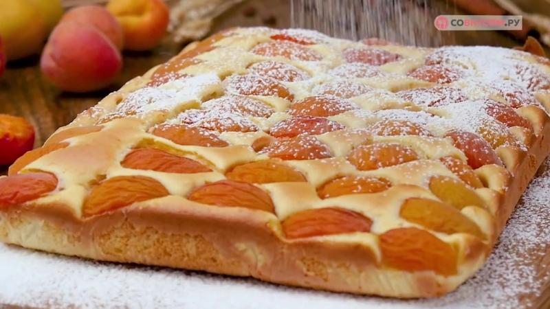 Пирог с абрикосами в духовке - Рецепты от Со Вкусом » Freewka.com - Смотреть онлайн в хорощем качестве