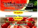 Арбузы Помидоры 02 07 08 Нижнеудинск