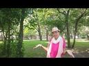 Зачем нужны неприятности? Видео-блог Марии Соколовой