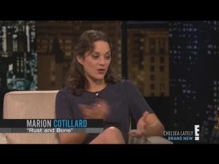 Marion Cotillard au  Chelsea Lately le 26 novembre 2012
