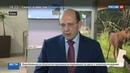Новости на Россия 24 В Сочи проходит форум посвященный инновациям в дорожном строительстве