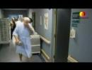 Докторология Иммунология