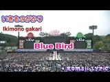 Ikimono gakari - Blue Bird + Romaji Lyric Atsugi Show