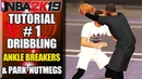 NBA 2K19 Ultimate Dribbling Tutorial - How To Do Ankle Breakers Park Crossovers By ShakeDown2012