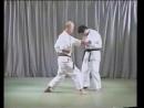 Сущность Вадо рю каратэ Татсуо Судзуки Фильм №3