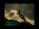 Утконос - Platypus Энциклопедия животных