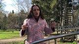 Предзадание №2. Онлайн тренинг Натальи Финогеевой