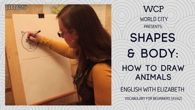English with Elizabeth (for beginners). Shapes Body: How to Draw Animals