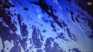 Снежный барс вместе с бараном свалился с огромной высоты и остался жив😲